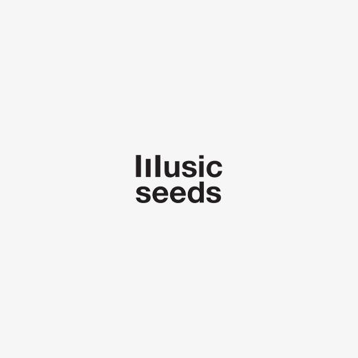 logo music seeds